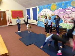 Gymnastic Routines (14)