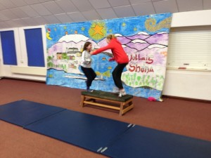 Gymnastic Routines (24)